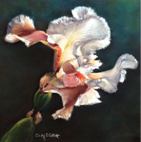 """""""White Iris"""" original fine art by Cindy Gillett"""