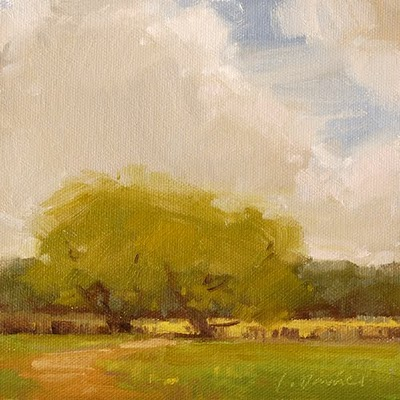 """Shaded Ranch Gate"" original fine art by Laurel Daniel"