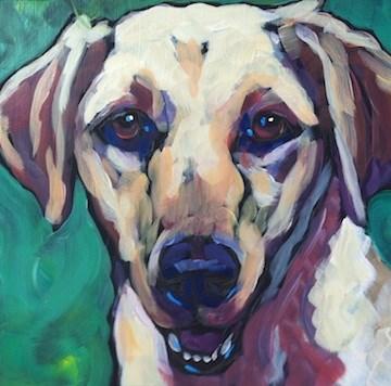 """""""Gus"""" original fine art by Kat Corrigan"""