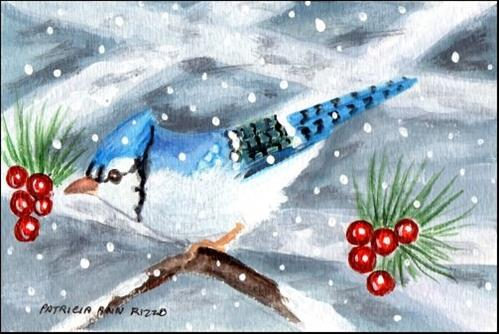 """Little Bluejay"" original fine art by Patricia Ann Rizzo"