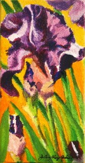 """Iris, the Poor Man's Orchid"" original fine art by JoAnne Perez Robinson"