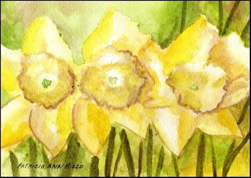 """""""Bright New Daffodils"""" original fine art by Patricia Ann Rizzo"""