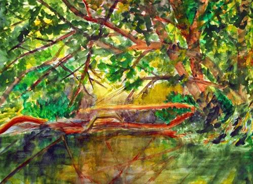 """Sunlit Creek"" original fine art by Donna Crosby"