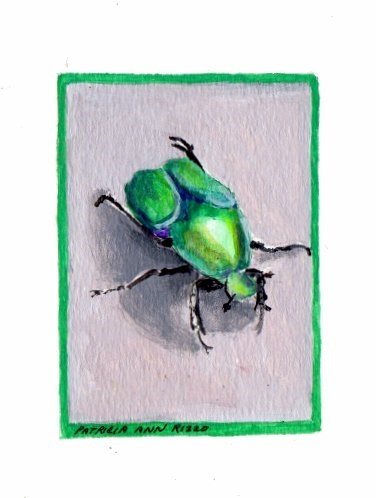 """""""Green Bug"""" original fine art by Patricia Ann Rizzo"""