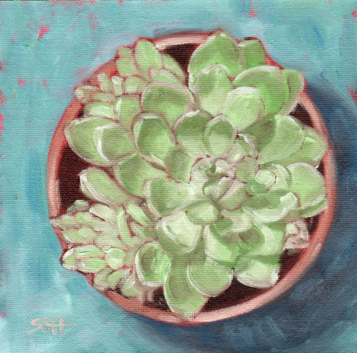 """Succulent"" original fine art by Sandy Haynes"