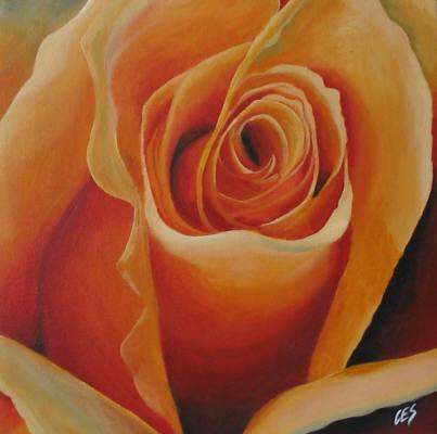 """""""Rose"""" original fine art by ~ces~ Christine E. S. Code"""