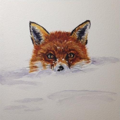 """""""Fox"""" original fine art by Carrie Gould"""