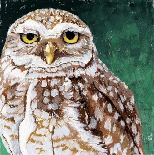 """pygmy owl painting"" original fine art by Ria Hills"