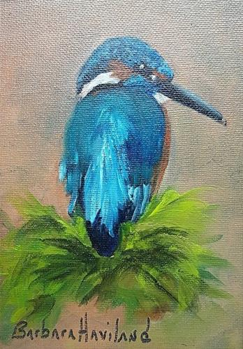 """Little KingFisher Bird"" original fine art by Barbara Haviland"