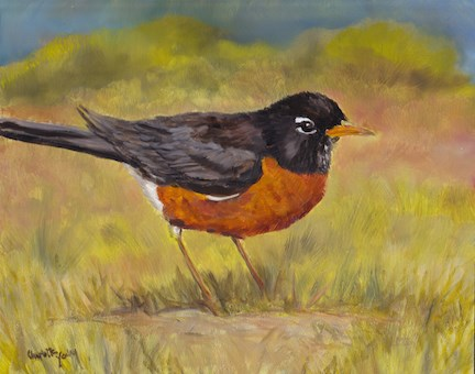 """Spring Robin"" original fine art by Charlotte Yealey"