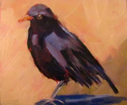 """Colly Bird"" original fine art by Sue Harrell"