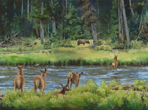 """Wildlife, Landscape Painting Elk Calves Crossing the Madison River by Colorado Artist Nancee Jean"" original fine art by Nancee Busse"